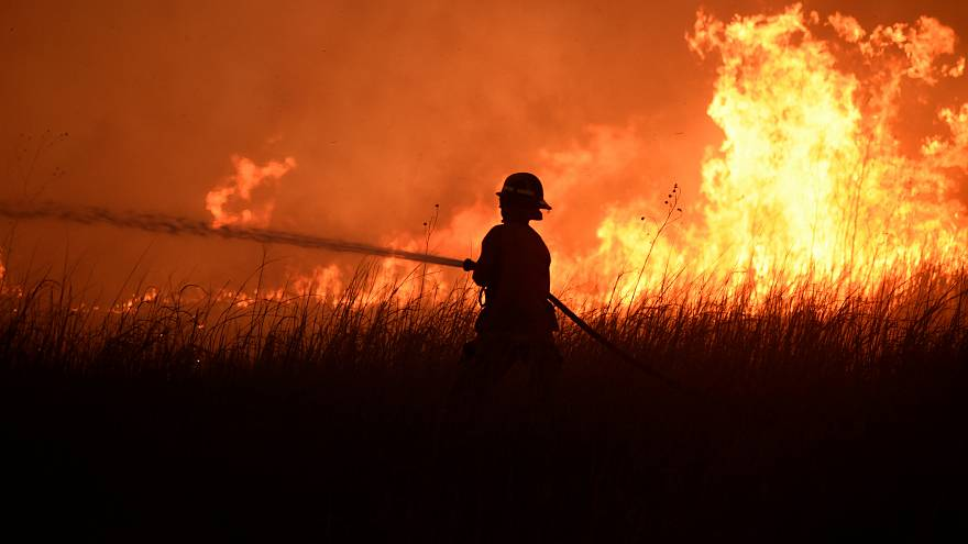 В России полыхают лесные пожары