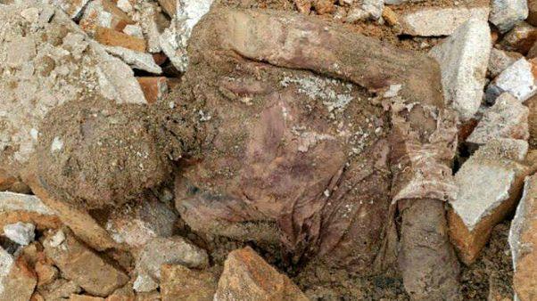 رضا پهلوی: پیکر پیدا شده به احتمال قوی متعلق به رضا شاه است