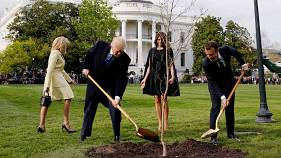 The best memes to come from Trump and Macron's tree planting photos