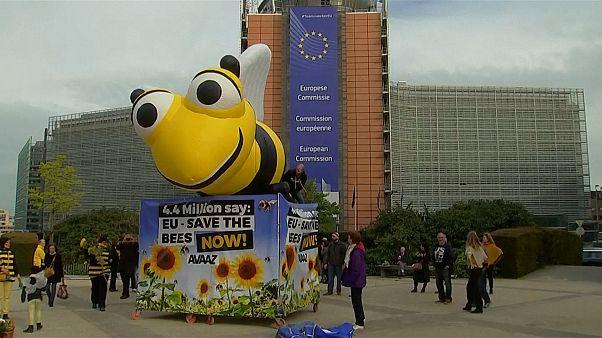 """Umweltaktivisten feiern Verbot von """"Bienentötern"""""""