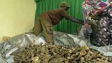 Halladas varias fosas comunes en Ruanda