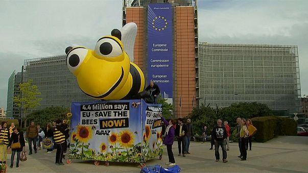 Евросоюз спасает пчел