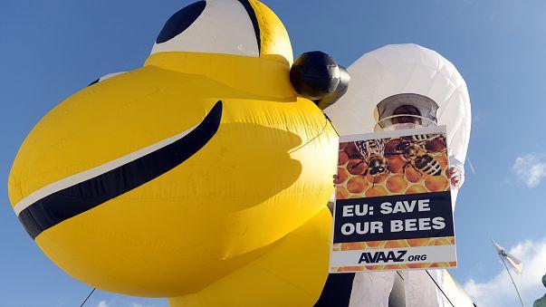 La UE actúa para proteger a las abejas