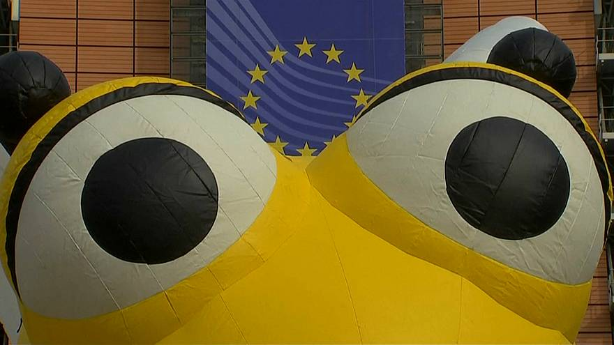 Евросоюз борется с гибелью пчёл
