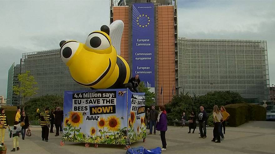EU nations back ban on insecticides to protect honey bees