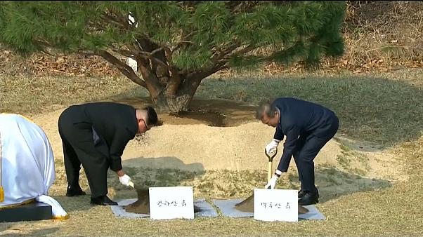 Kim, Moon plant tree to commemorate first meeting