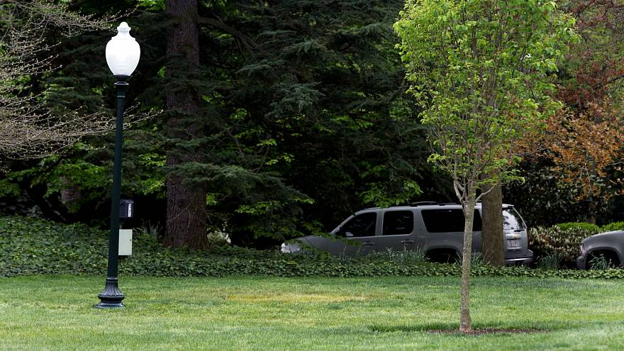 Tree sapling Macron gave to Trump appears to have disappeared from White House lawn