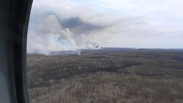 Rusya'da orman yangını