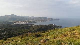 L'Isola d'Elba nello smartphone