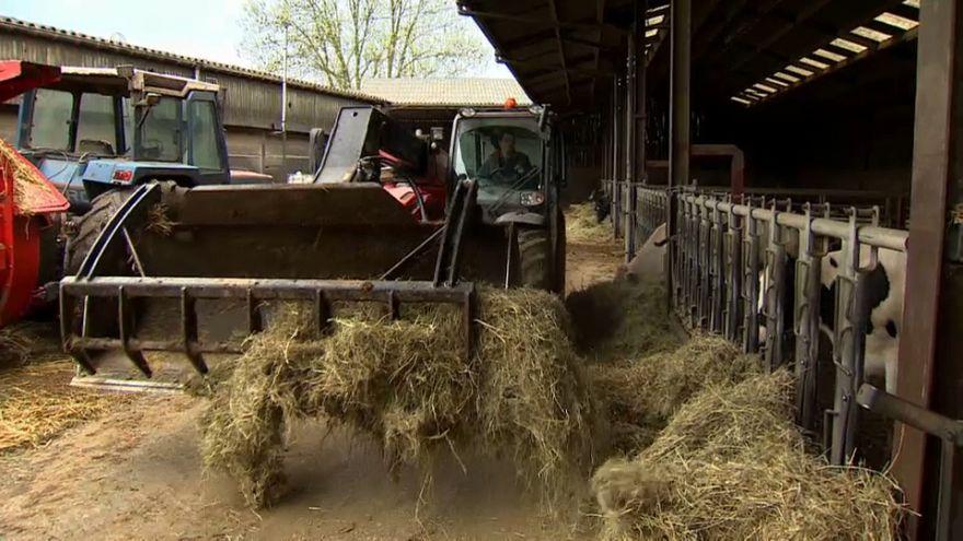 Budget européen : l'agriculture dans le viseur