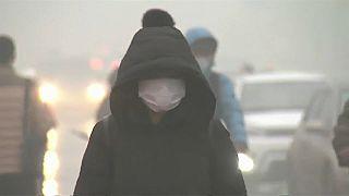 Загрязнение воздуха убивает 7 млн.человек в год - ВОЗ