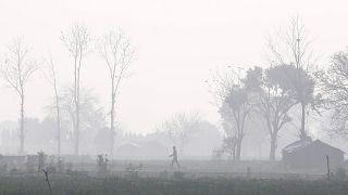Maioria da população mundial respira ar contaminado