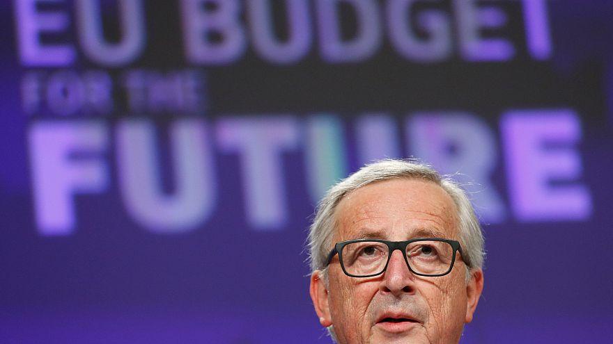 EU-Haushalt: Wofür es mehr Geld gibt und wofür weniger