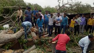 People remove trees uprooted by storms in Alwar, Rajasthan, May 3, 2018