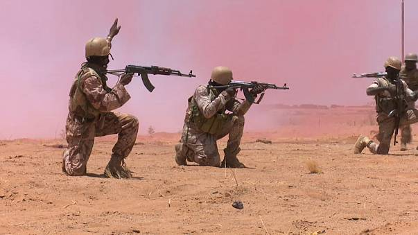 Europe and USA take the fight against Jihadism to Niger