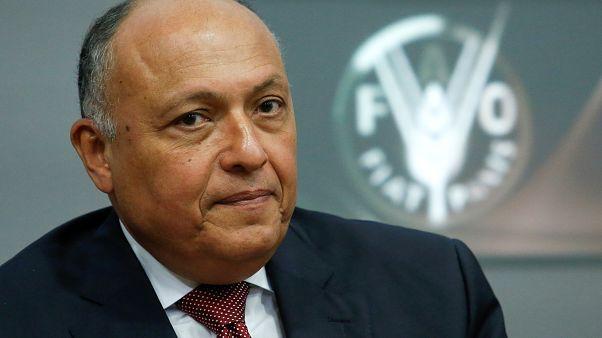 """الخارجية المصرية: """"إرسال قوات عربية إلى سوريا أمر وارد"""""""