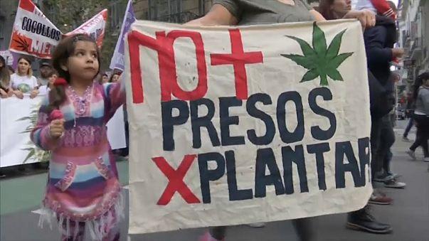 Milhares em Buenos Aires e Lima pela legalização da Canábis