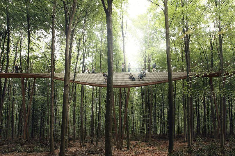 Credit: EFFEKT Architects/Camp Adventure