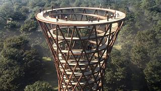 Danimarca: un grattacielo di legno nella foresta