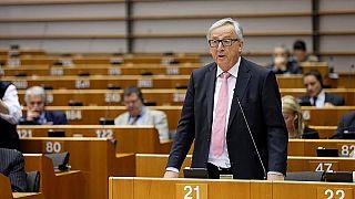 أوروبا تحدّد استراتيجيتها لتنمية السياسة الزراعية المشتركة