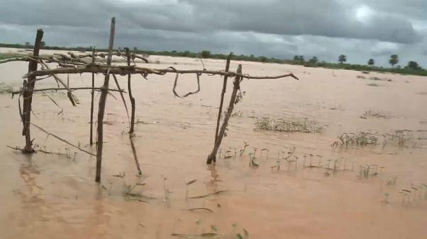 Trágica rotura de una presa en Kenia: hay decenas de muertos