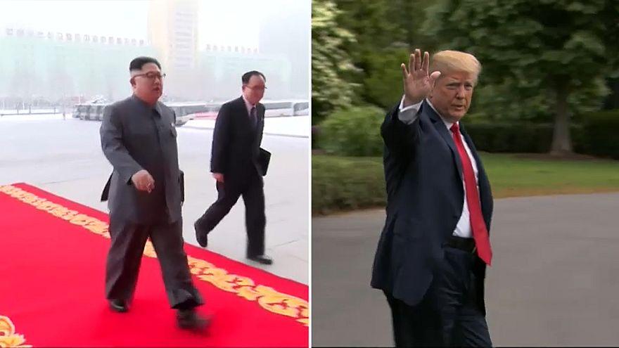 US-Präsident Donald Trump wird Nordkoreas Machthaber Kim Jong-un treffen