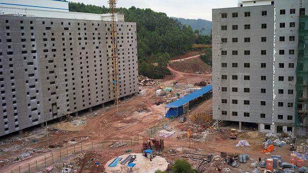 High rise pig farm in China