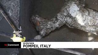 Pompeji: Überreste eines antikes Pferdes gefunden