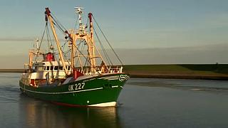 Οι πολιτικοί μαλώνουν, οι ψαράδες ανησυχούν
