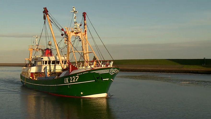 Pescadores dos Países Baixos temem efeitos do Brexit