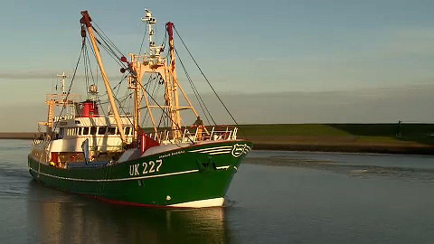 El impacto del brexit en el sector pesquero