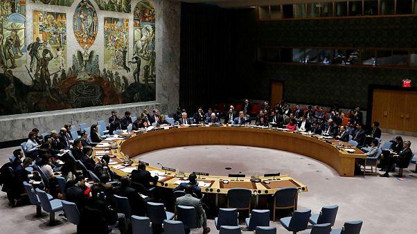 Security Council members meet
