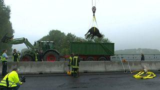 Almanya'da mandalar trafiği felç etti