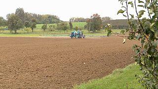 European court upholds pesticide ban