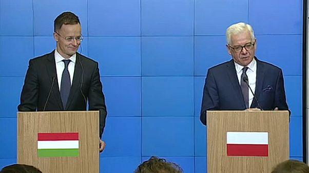 Lengyel-magyar külügyi csúcs