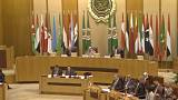 Arab League demands inquiry into Israeli 'crimes'
