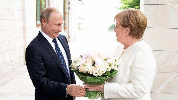 Watch live: Putin and Merkel joint press conference in Sochi