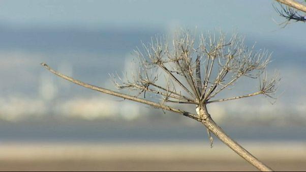 Climat : une conférence à Nicosie