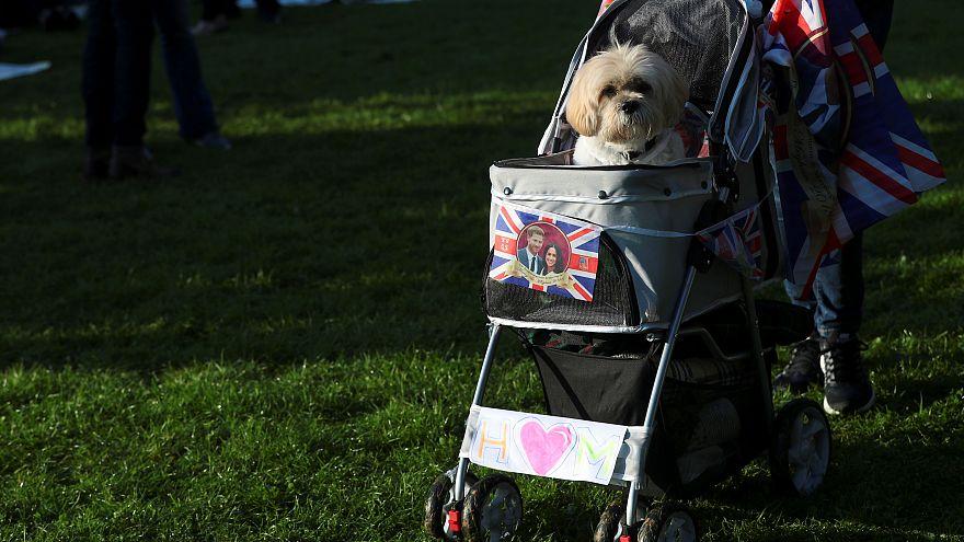 Nacht im Freien bei 7 Grad - Briten im Hochzeitsfieber: 10 der verrücktesten Looks