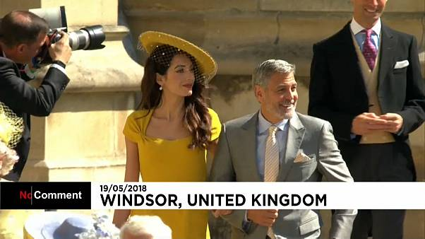 Королевские гости
