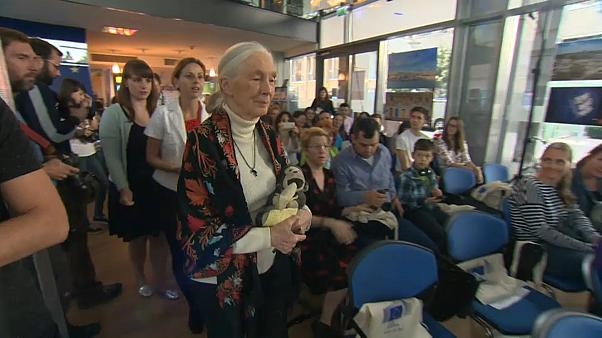 Dr. Jane Goodall in Budapest