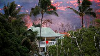 Hawaii: Vulkan Kilauea immer aktiver - Mann auf Balkon verletzt