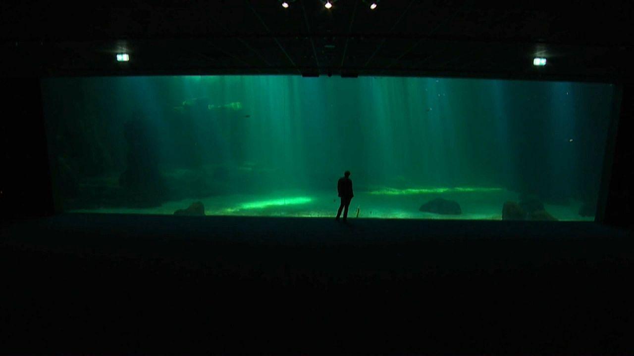 Frankreich hat Europas größtes Aquarium