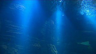 El acuario más grande de Europa