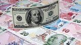 العملة التركية والدولار