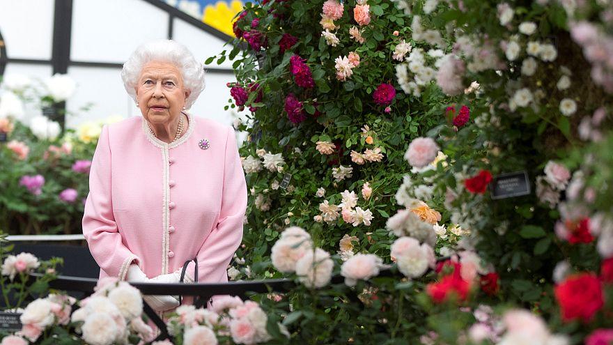 Queen Elizabeth bestaunt Chelsea Flower Show