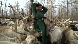 A Dhuka reindeer herder in northern Mongolia
