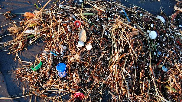 Plastic washed ashore on Pacific Ocean beach in San Francisco