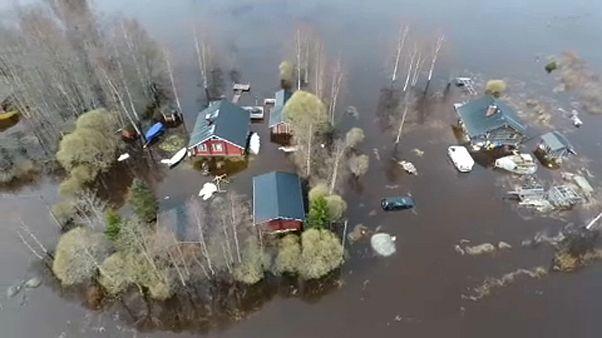 Clima extremo: Famílias processam União Europeia