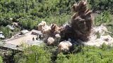 """تفجير أنفاق في موقع """"بونغي-ري"""" لإجراء التجارب النووية في كوريا الشمالية"""